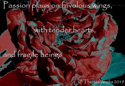 red rose black.jpg