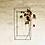 Thumbnail: Piantami al muro 3