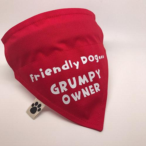 Friendly Dog...GRUMPY OWNER