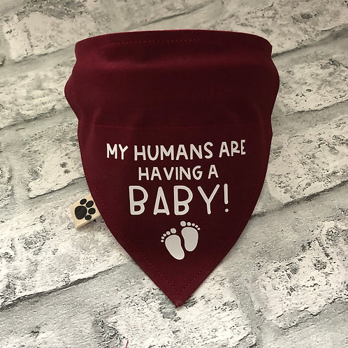 My Humans Are Having A Baby!