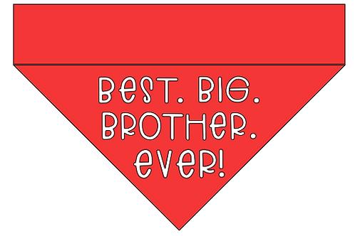 Best. Big. Brother. / Sister. Ever!