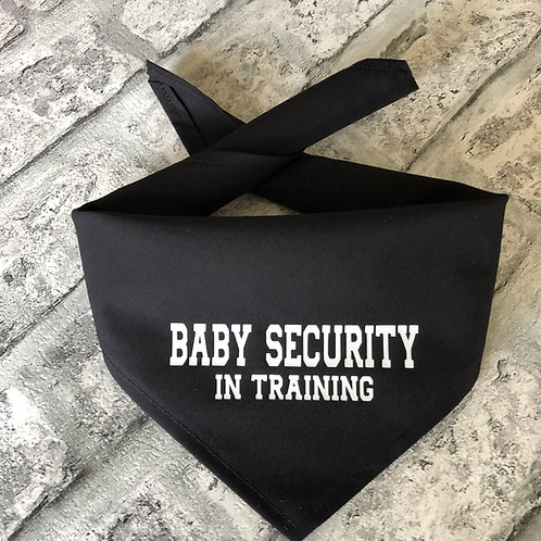 Baby Security in Training