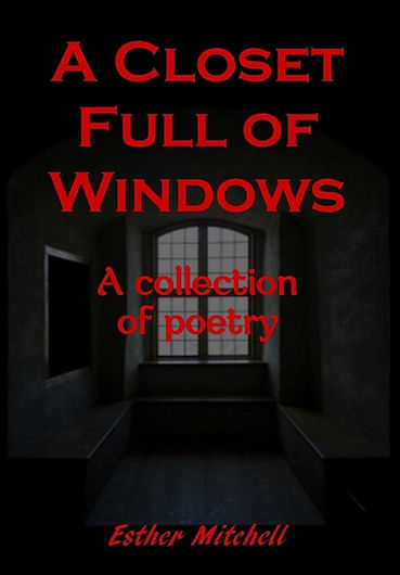A CLOSET FULL OF WINDOWS Coverart.jpg
