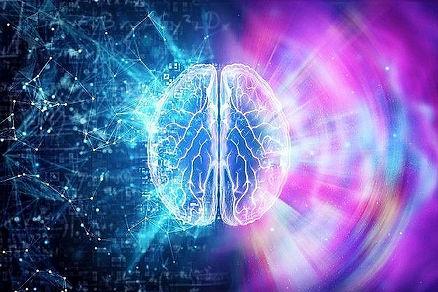 O Cérebro Humano Em Um Fundo Azul, O Hemisfério é Responsável Pela Lógica_edited_edited.jp