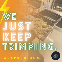 Just Keep Trimming.mov