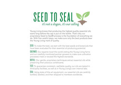 Essential Oils 101 Oil freedom_Page_05