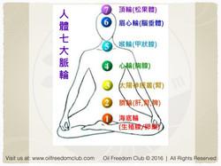 JK Taiwan Workshop Nov 25 2016 - Immune System.044