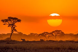 Masai_Mara_Sunset.jpg