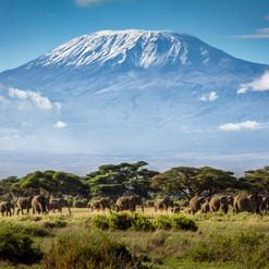Mount_Kenya.jpeg