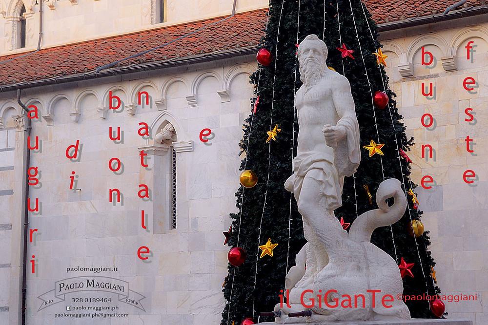 Auguri di Buon Natale e Buone Feste da il GiGanTe di Carrara foto Paolo Maggiani