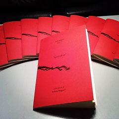 libro d'arte, Art book, limited edition, spectra fire, paolo maggiani, spazio tadini, milano, photofestival, fotografia, photography, poetry