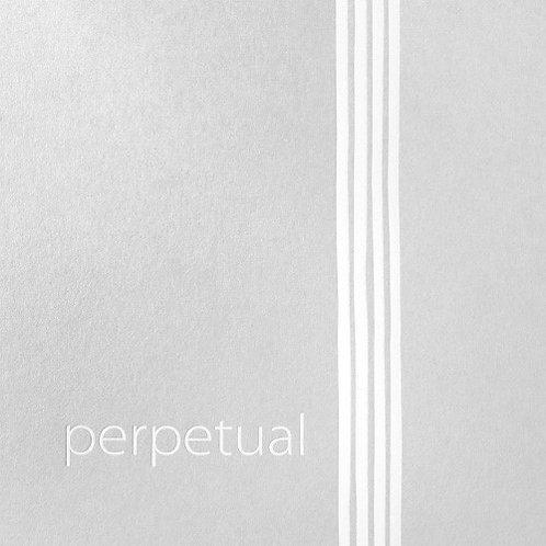 Pirastro Perpetual Set w/ Solo G & C