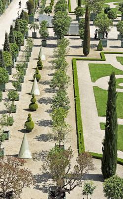 Foto intervenida Versalles -Jardines -Francia 2015