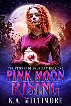 Pink Moon Rising.jpg