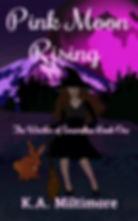 pink_moon_final-ebook_cover.jpg