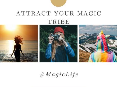 Magic Life - Embrace the Enchantment