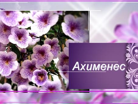 Ахименес