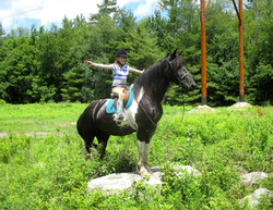 Our horse Hope is fearless!