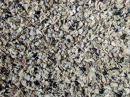 CRUSHED SHELL  7-13mm