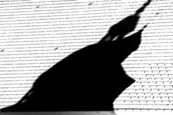 20190516 L'ombre de la liberatrice.
