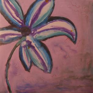 Sensacio lila