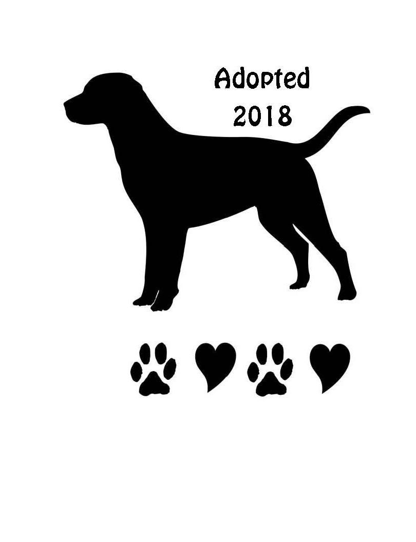 Adopted 2018.jpg