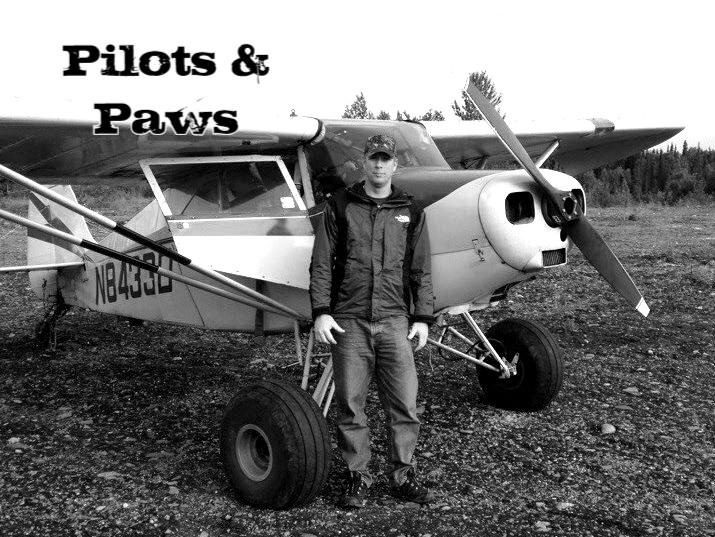 Pilots & Paws Cover Album.jpg
