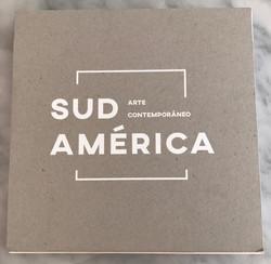 sud america arte contemporaneo