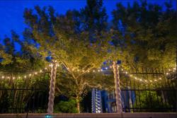 Empress Estate Garden Lights