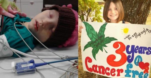 Sehen Sie, wie bei einem Mädchen nach nur sechs Tagen Einnahme von Cannabisöl Leukämie in Remission