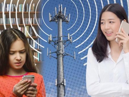 Direktor der Berkeley Universität: Der Einsatz der 5G-Technologie ist ein gewaltiges Experiment an d