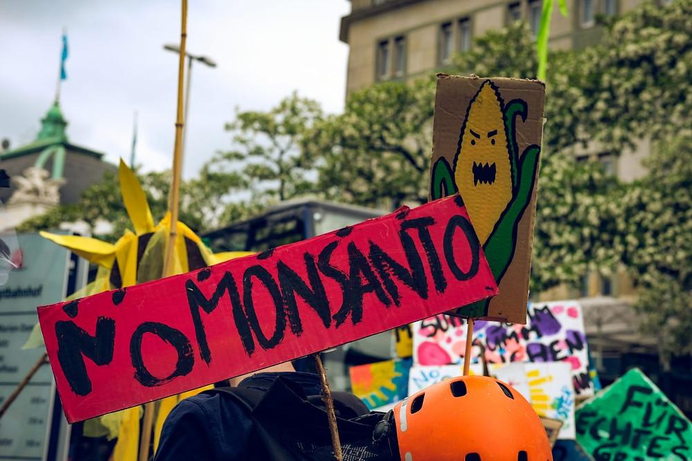 Monsanto Glyphosat Krebs