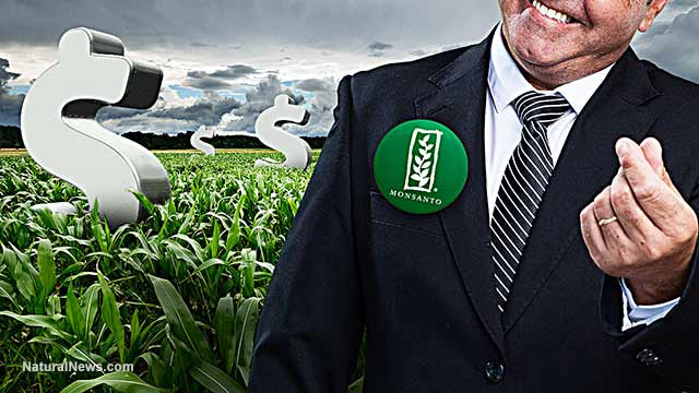 Monsanto Korruption