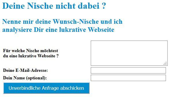Lars Pilwaski Nischenwebsite Analyse