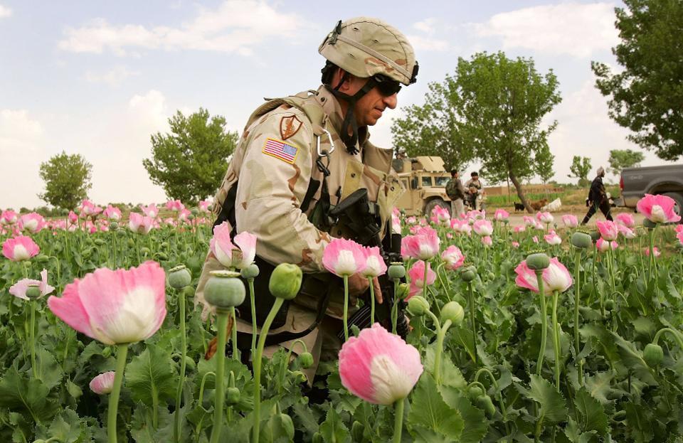 Opium CIA Afghanistan