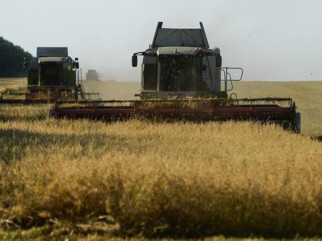 Russland will führender Exporteur von Bio-Lebensmitteln werden, während Europa Zukunft in GMO sieht