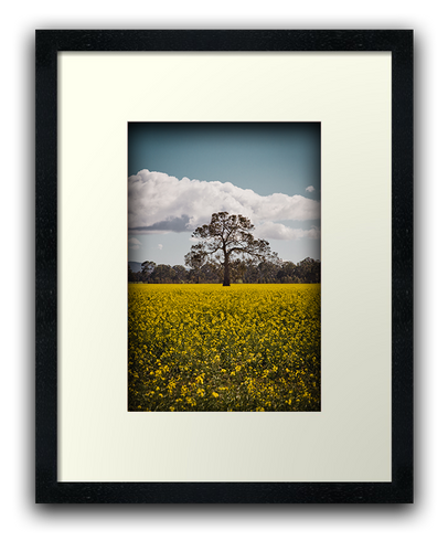 picture_frame02.png