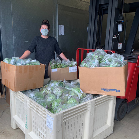 Food Roots Connects Local Farms to Oregon Food Bank