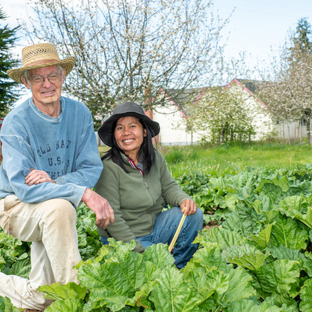 Food Roots FarmTable Online Marketplace: Helping Customers Help Local Farmers