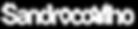 Logo_SandroCoelho2020_BrancoEscrito-03.p