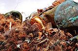 copper-1504071_1280.jpg