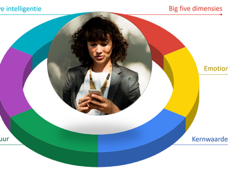 The Fit™ combineert 6 instrumenten voor de perfecte fit tussen kandidaat en organisatie