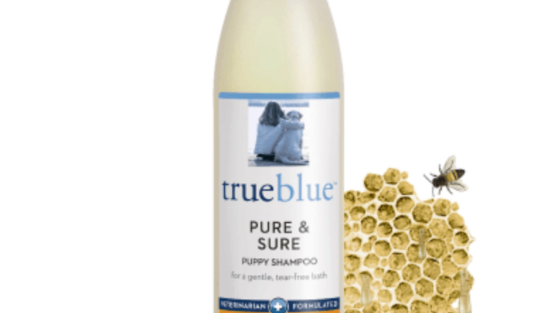 True Blue Shampoo