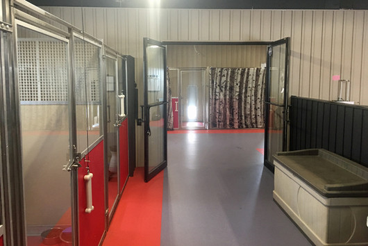 reddogstable kennel runs.jpg