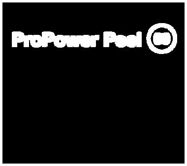 dermalogica pro power peel 60