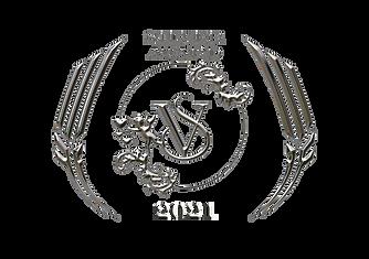 SILVER_AWARD_VSC_2020.png