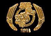 GOLD_AWARD_VSC_2020.png