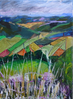 Memory of Shropshire