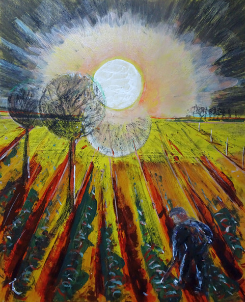 Moon over cabbage field