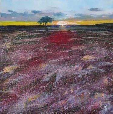 Sunset on Egton Moor